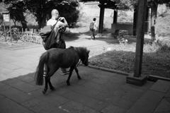 馬を飼っていた人・・・区内