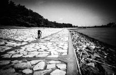 サイクリングヤッホー 道なき道