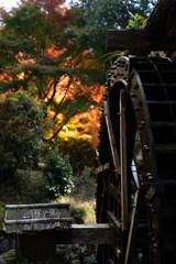 水車と紅葉