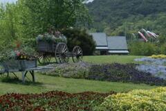 明石海峡公園 馬車風のディスプレイ