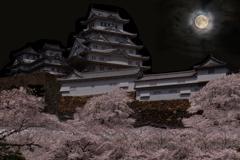 白鷺城の宵