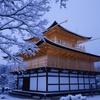 金色と吹雪1