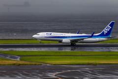 雨の羽田空港3