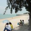 アモイ島の海岸
