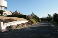 披露山の風景