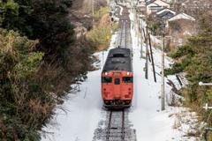 残雪とタラコ1
