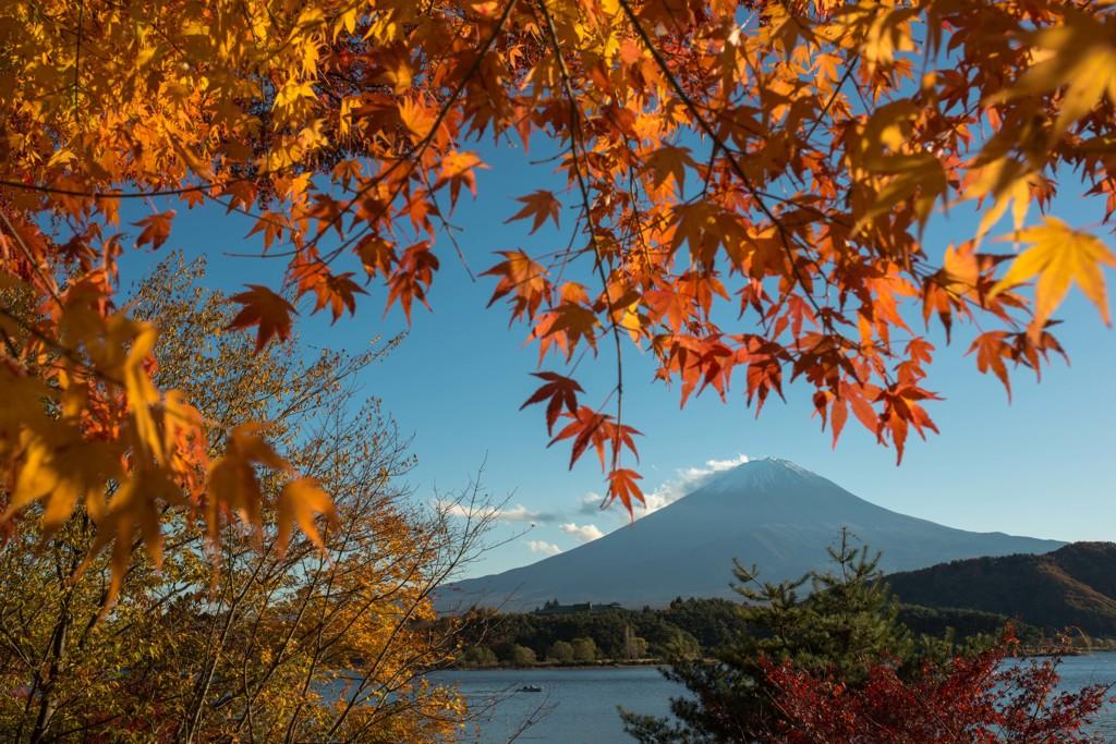 富士をバックに・・・