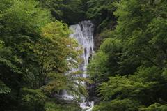 唐沢の滝2