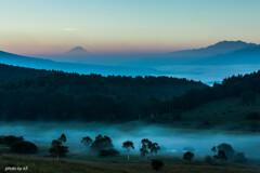 漂う霧の朝1