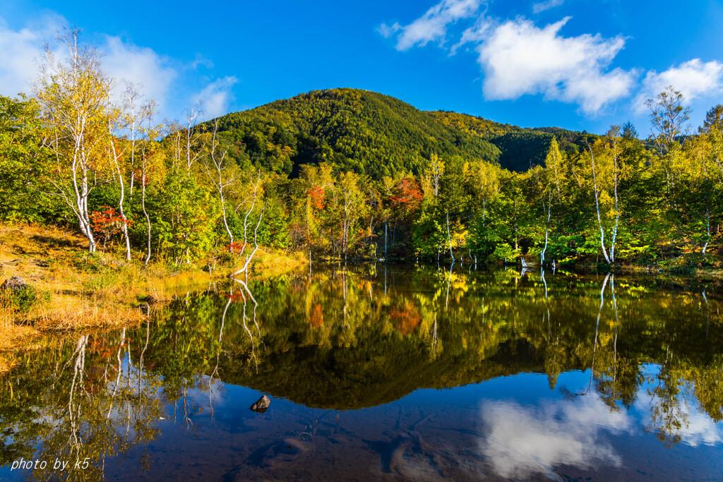色ずくまいめの池