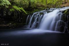 新緑の蓼科大滝2