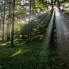 キャンプ場の光芒