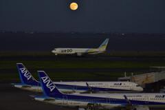 AIR Do&満月