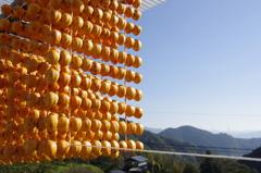 串柿と青空