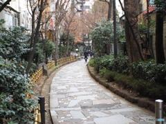 新宿遊歩道公園 四季の路