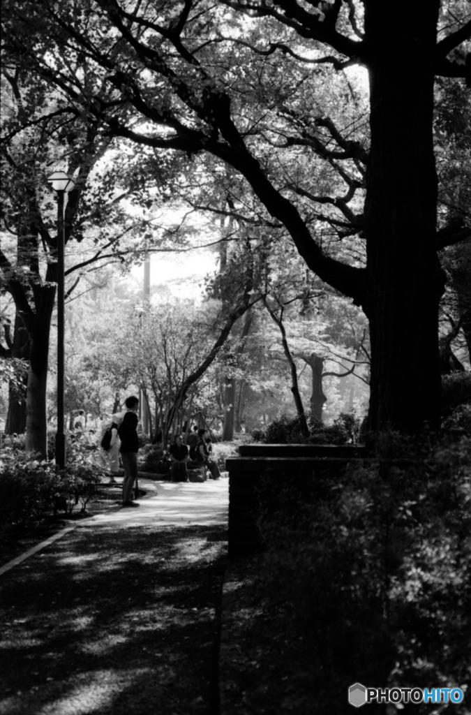蚕糸の森公園 休日の風景