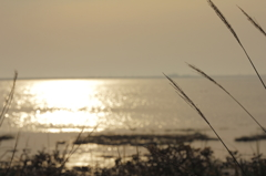 野付半島の朝