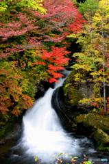 PH-0271_竜頭の滝②