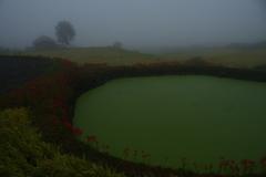 雨と霧の中