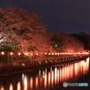 倉敷  酒津公園   夜桜