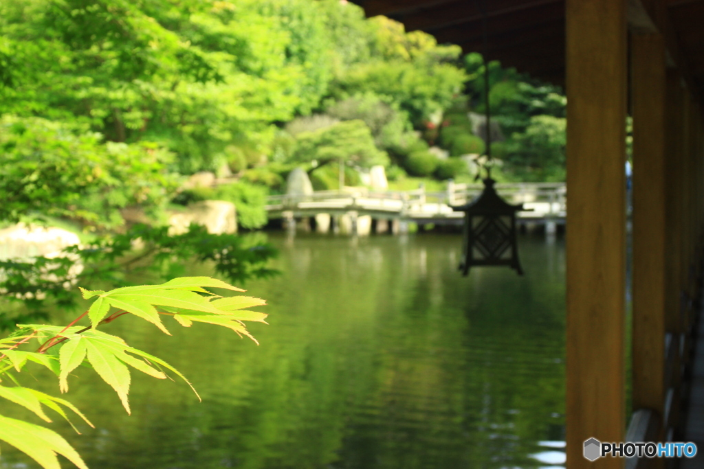 広島県 三原市 本郷町 三景園