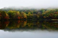 霧につつまれる秋