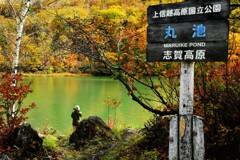 丸池の秋色