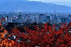 水色の街を彩る秋