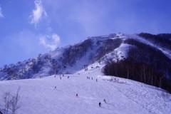 Snow Paradise♪。.:*・゜