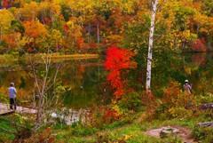 深まる秋を愛でる~丸池~