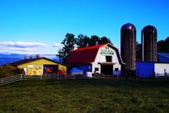 碧空の似合う赤い屋根の素敵な牧場~♬*.+゜