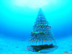 水中のクリスマス