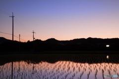 南田原の田園