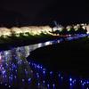 みなみの夜桜景 ⑨