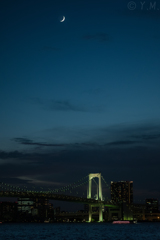 月下のレインボーブリッジ