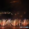 市川花火大会6 草原を飛ぶ虫と鳥