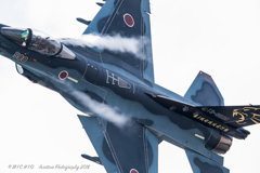 Multi Role Fighter ~4