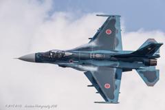 Multi Role Fighter ~8