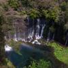 白糸の滝にかかる虹