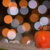 柿とイルミネーション