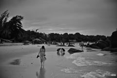 南国の砂浜