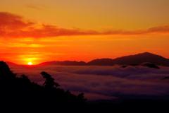 日の出と雲海