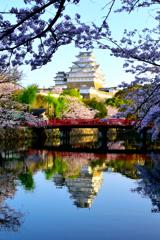 姫路城 映り込み