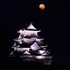 姫路城 満月-Ⅱ