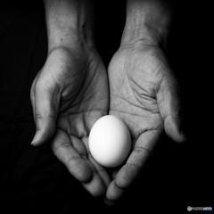 egg in hands