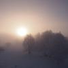 12月のある朝7