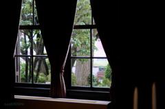 窓越しの秋雨