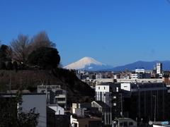 大きな富士