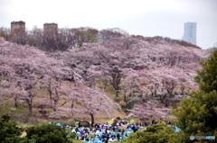 横浜式花見