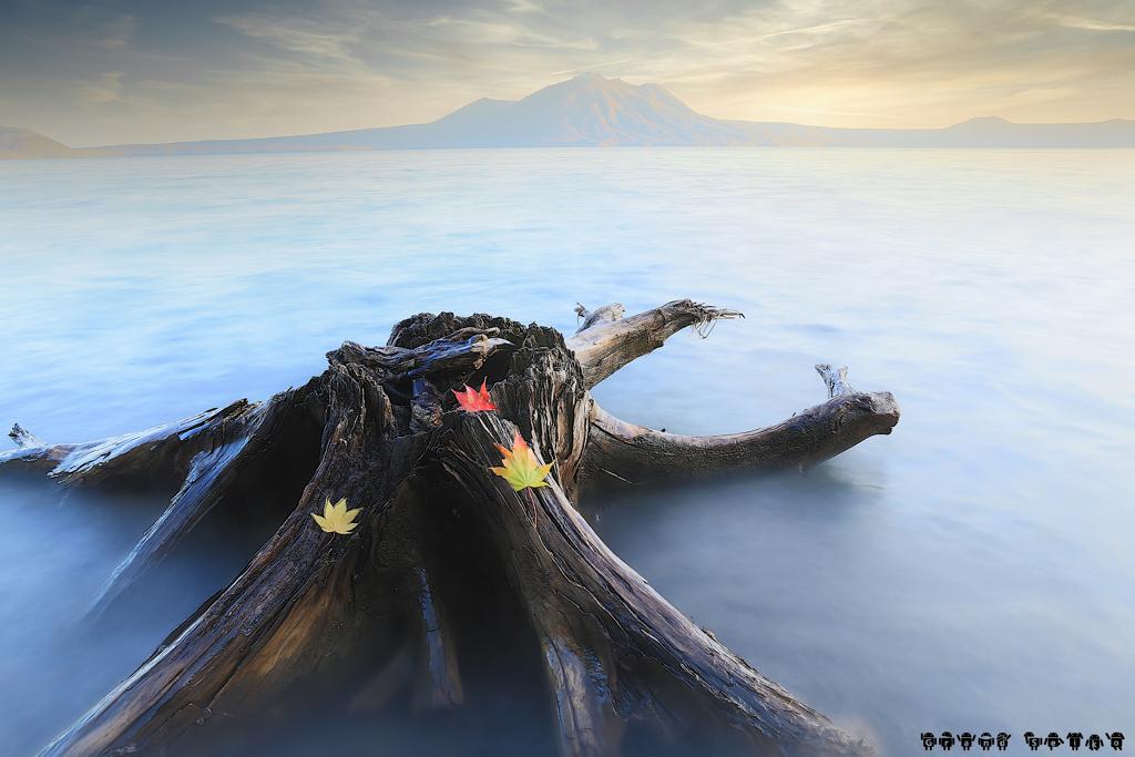 耽美の死骨湖